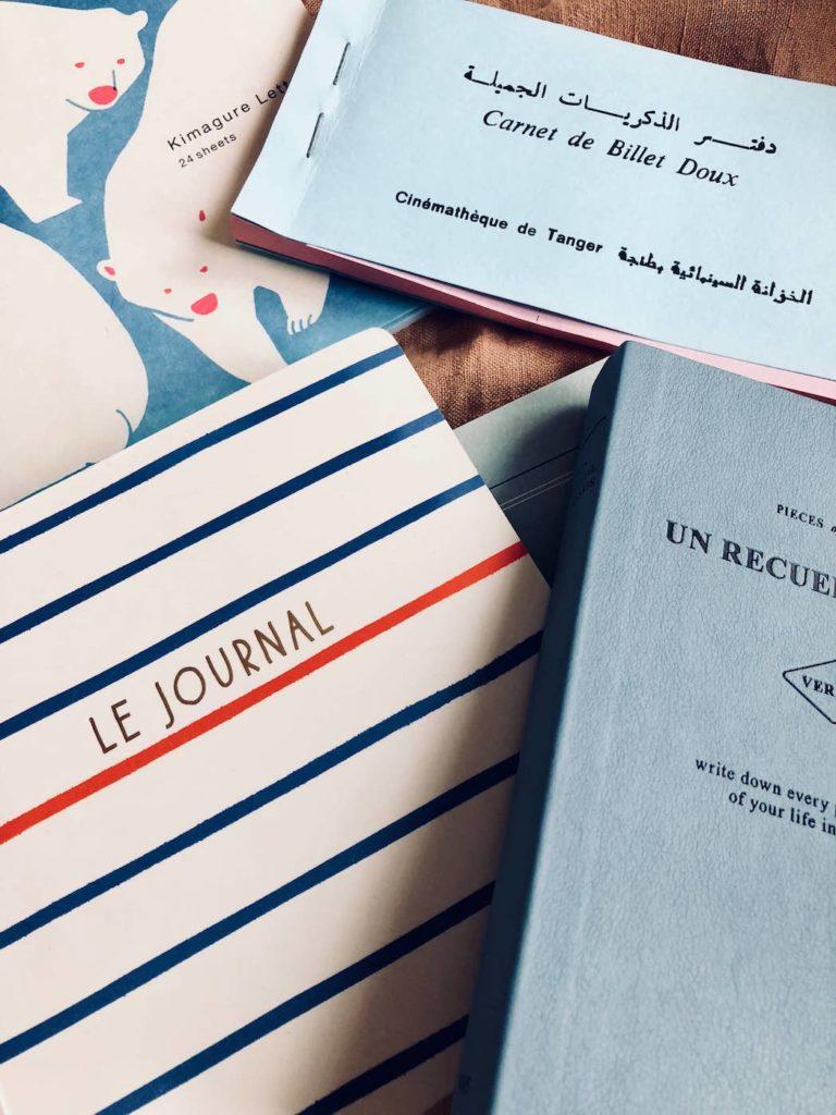 es-jolis-cahiers-julie-flamingo - 4