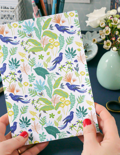 LES-JOLIS-CAHIERS-cahier-A5-les oiseaux-couverture